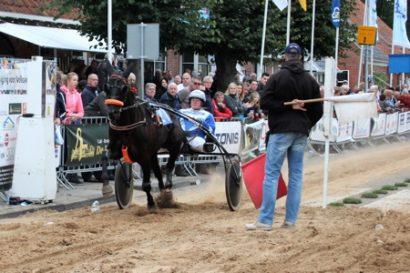 Het meest succesvolle Nederlands gefokte paard van 2018: Eliot Charisma.